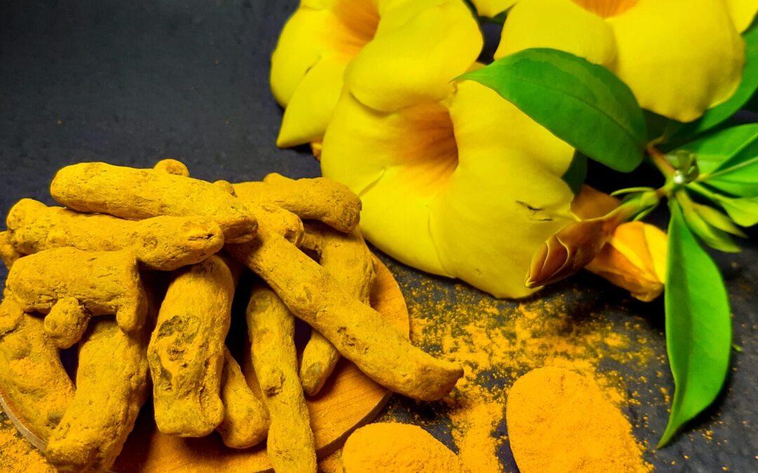 Ayurveda, Ayurvedic Medicines and Important Herbs