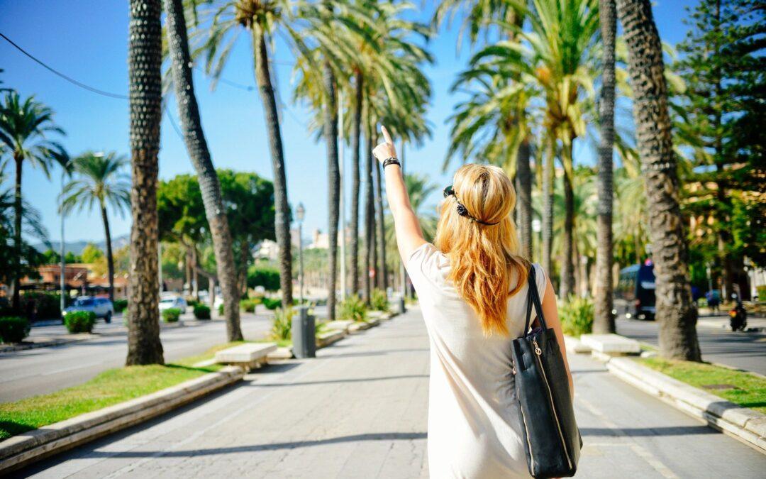 zaftyg travel this summer